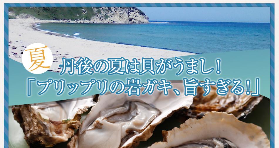 夏 丹後の夏は貝がうまし!「プリップリの岩ガキ、旨すぎる!」