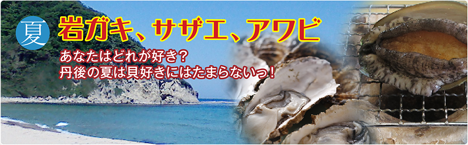 夏 岩ガキ、サザエ、アワビ あなたはどれが好き?丹後の夏は貝好きにはたまらないっ!